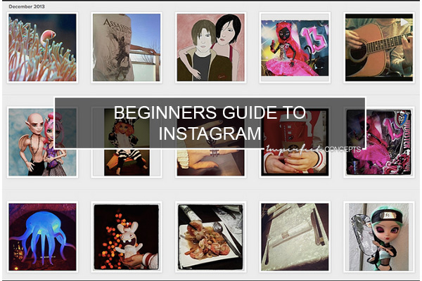 Beginners Guide To Instagram