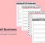 Financial Budget Worksheet 2016 - PD